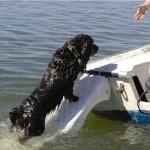 Skamper Ramp su una barca