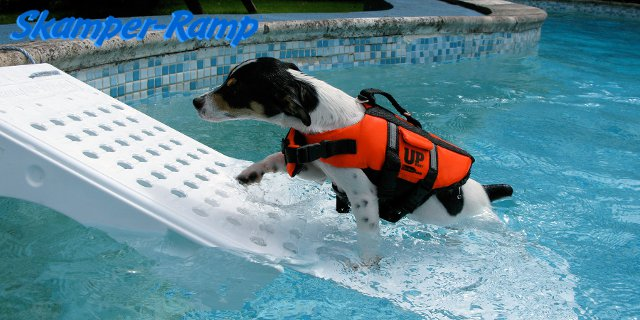 Sakmper Ramp: sicurezza per gli animali in piscina