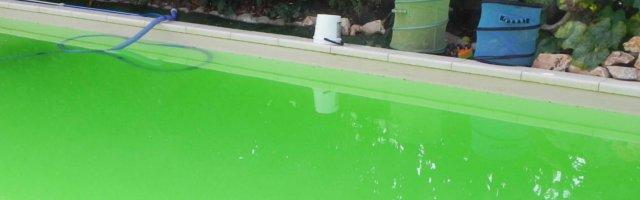 Combattere le alghe in piscina