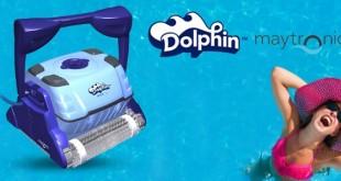 Dolphin Sprite C