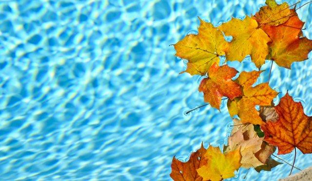 chiusura invernale delle piscine fuori terra foglie