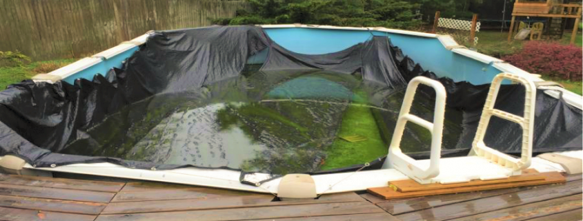danni alla copertura per mancata manutenzione invernale piscina
