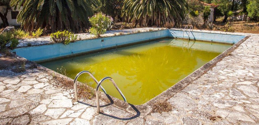 eliminare le alghe verdi in piscina