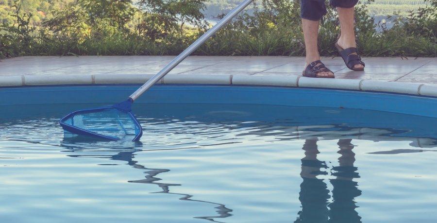 trasferire i girini in piscina