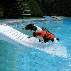 rampa di risalita per cani