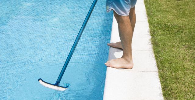 spazzola piscina
